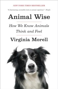 Animal Wise: How We Know Animals Think and Feel  -     By: Virginia Morell