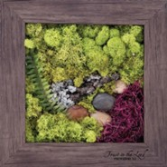 Trust In the Lord Biophilic Framed Art