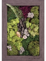 This is My Father's World Biophilic Framed Art