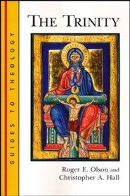 The Trinity: Guides to Theology Series
