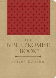 eBook Prayer Edition