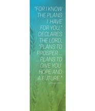Color Wash Jer 29:11 (2' x 6') Vinyl Banner