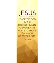Advent Luke 2 Jesus (2' x 6') Vinyl Banner