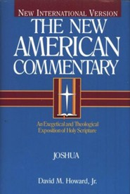 Joshua: New American Commentary [NAC]