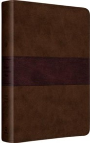 Imitation Leather Brown / Purple Book