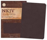 Bonded Leather Burgundy