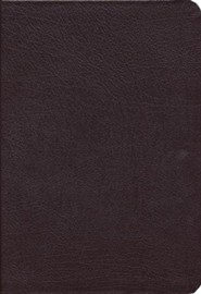 Bonded Leather Burgundy Thumb Index