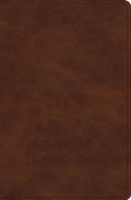 ESV Verse-by-Verse Reference Bible, TruTone Imitation Leather, Deep Brown