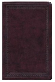 Imitation Leather Burgundy Large Print Black Letter two-tone