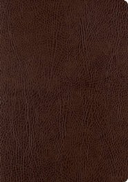 Bonded Leather Brown Large Print