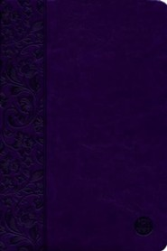 Imitation Leather Purple Book Black Letter Second Edition