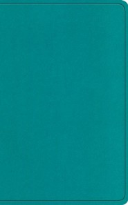 Imitation Leather Teal