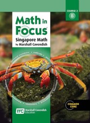 Math in Focus Grade 7 Student Edition Volume B