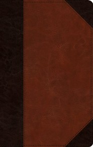 Imitation Leather Brown Large Print Red Letter two-tone