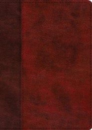 Imitation Leather Burgundy Book Black Letter Thumb Index