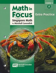 Math in Focus Grade 7 Course 2 Extra Practice A