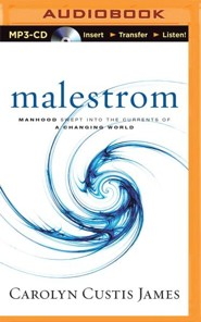 Malestrom: Manhood Swept into the Currents of a Changing World - unabridged audio book on MP3-CD  -     By: Carolyn Custis James