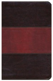 Imitation Leather Brown / Burgundy Book Red Letter Thumb Index