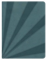 HCSB Apologetics Study Bible for Students--soft leather-look, steel blue (indexed) - Slightly Imperfect