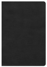 HCSB Giant Print Reference Bible, Black LeatherTouch, Thumb-Indexed