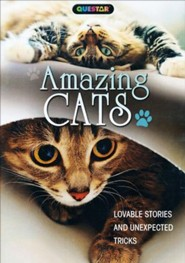 Amazing Cats: Lovable Stories and Unexpected Tricks, DVD