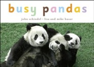 Busy Pandas - eBook