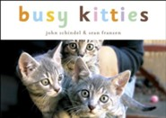 Busy Kitties - eBook
