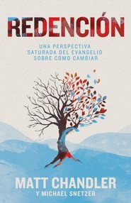 Redencion: Una perspectiva saturada del evangelio sobre como cambiar (Recovering Redemption: A Gospel Saturated Perspective on How to Change)