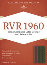 Imitation Leather Brown / Purple / Green Large Print Book Red Letter Spanish
