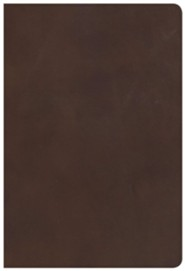 KJV Giant-Print Reference Bible--genuine leather, brown