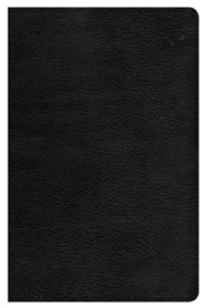 CSB Large-Print Personal-Size Reference Bible--genuine leather, black