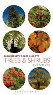 Pocket Guide to Trees and Shrubs  -     By: Bob Gibbons