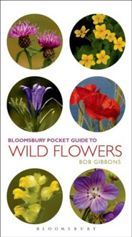 Pocket Guide To Wild Flowers  -     By: Bob Gibbons