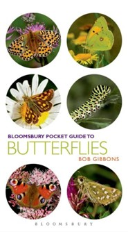 Pocket Guide to Butterflies  -     By: Bob Gibbons