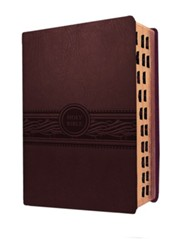 MEV Personal Size Large Print Indexed (Cherry Brown): Modern English Version (MEV), Leather, imitation  -     By: Faith Passio