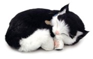 Breathing Pet, Black and White Cat