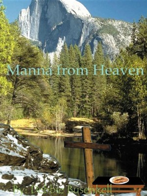 Manna from Heaven: Delicious Low-Fat Recipes Inspired by Great Bible Stories  -     By: Debbie Busenkell