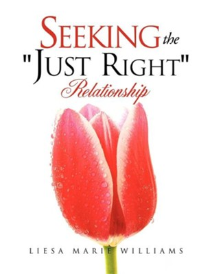 Seeking the Just Right Relationship  -     By: Liesa Marie Williams