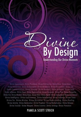 Divine by Design  -     By: Pamela Scott Strich