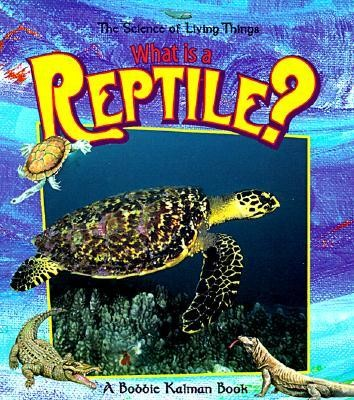 What Is a Reptile?  -     By: Bobbie Kalman
