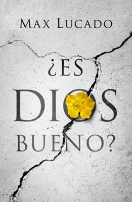 Is God Good? Spanish (NVI), Pack of 25 Tracts  -