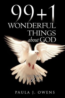 99+1 Wonderful Things about God  -     By: Paula J. Owens