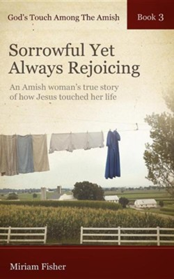 God's Touch Among the Amish Book 3  -     By: Miriam Fisher