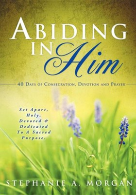 Abiding in Him  -     By: Stephanie a. Morgan
