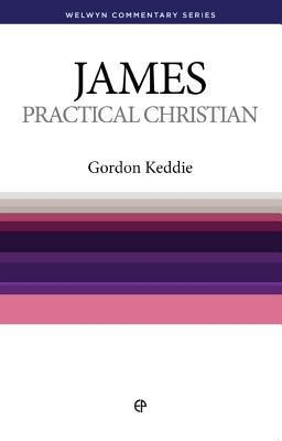 James: Practice Makes Perfect (Welwyn Commentary Series)   -     By: Anthony Bird