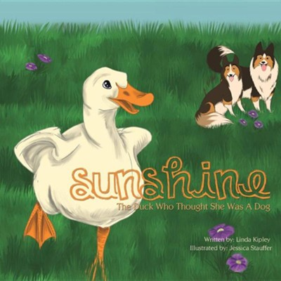 Sunshine  -     By: Linda Kipley     Illustrated By: Jessica Stauffer