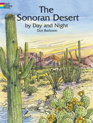 The Sonoran Desert by Day and Night  -     By: Dot Barlowe