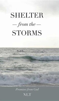 Shelter from the Storms  -     By: Linda Jones