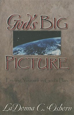 God's Big Picture: Finding Yourself In God's Plan  -     By: LaDonna C. Osborn
