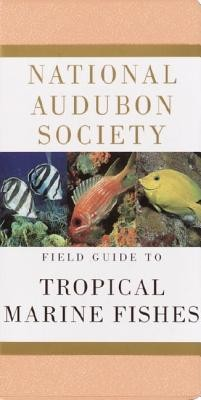 National Audubon Society Field Guide to Tropical Marine Fishes: Caribbean, Gulf of Mexico, Florida, Bahamas, Bermuda  -     By: C. Lavett Smith
